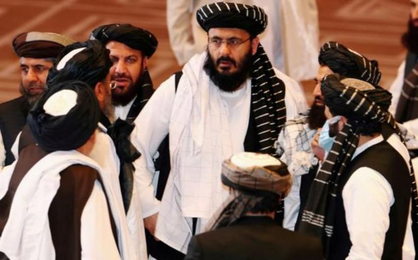 Media: German government held secret talks with Taliban