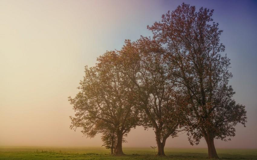 İstirahət günləri üçün hava proqnozu açıqlanıb