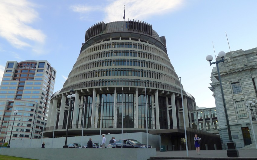В Новой Зеландии задержали мужчину с топором, разбившего двери парламента