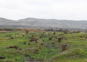 İşğaldan azad edilmiş ərazilərdə müasir sosial infrastruktur qurulacaq