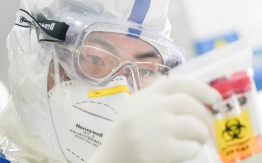В Японии разрабатывают реагент, выявляющий коронавирус за 50 минут
