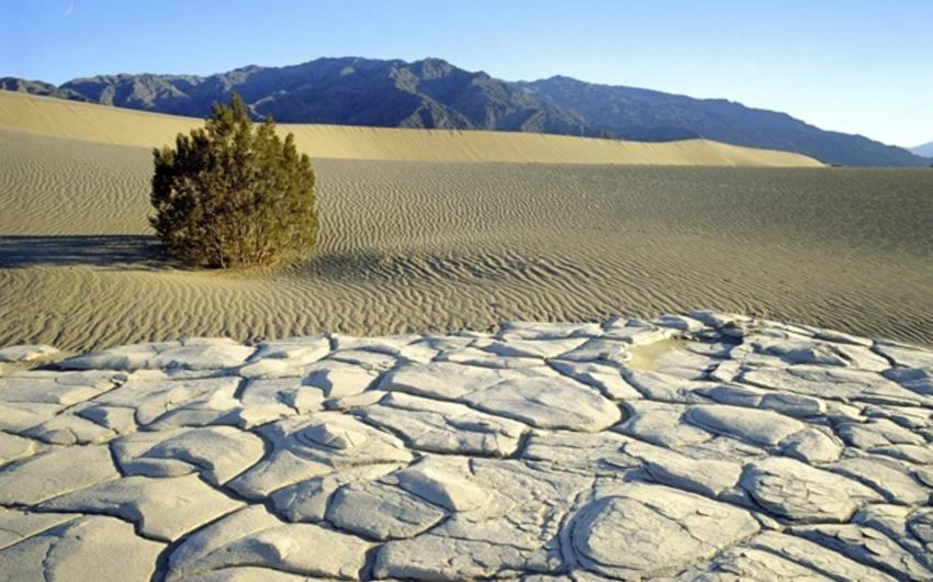 Yer kürəsində ən yüksək temperatur qeydə alındı