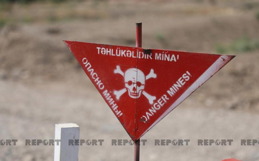 ANAMA employee hit by landmine
