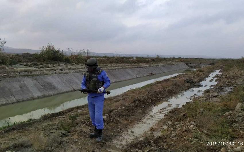 Abşeronda 82 mm-lik top mərmisi aşkarlanıb - FOTO