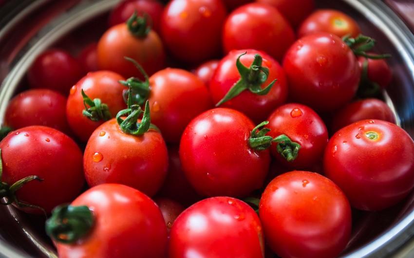 Azərbaycandan Rusiyaya ixrac edilən 50 ton pomidor geri qaytarılıb
