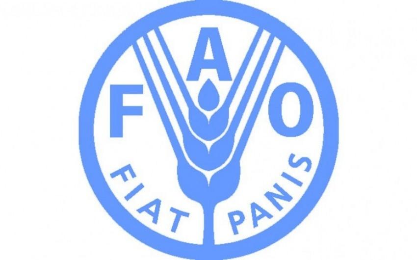 FAO pandemiya dövründə əkinçiliklə bağlı tövsiyələrini açıqlayıb
