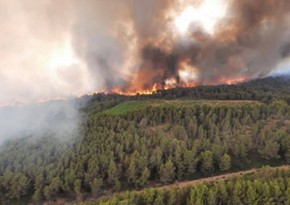 Fransada meşə yanğınları nəticəsində 2 nəfər ölüb