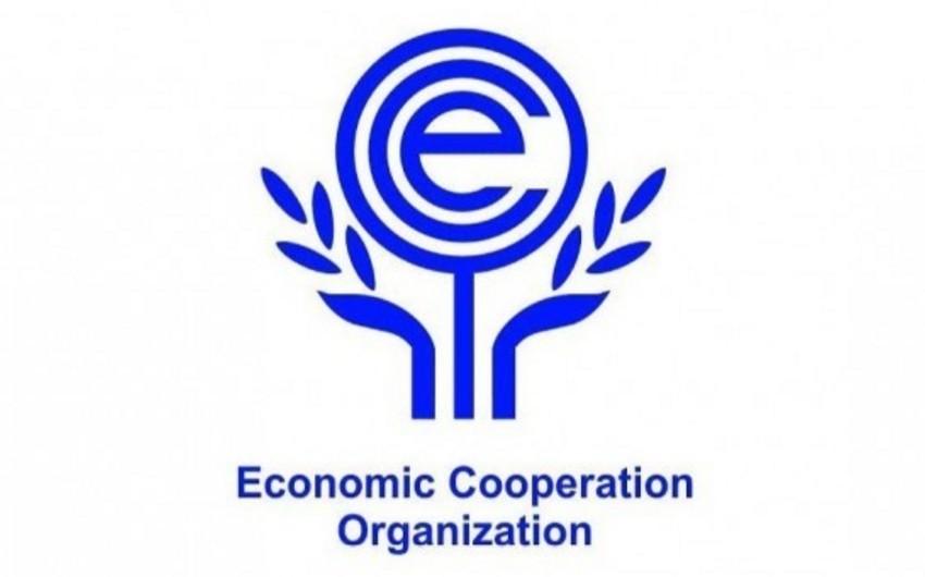 Son 15 ildə Azərbaycan ECO ölkələri arasında iqtisadiyyatı ən sürətlə inkişaf edən ölkə olub
