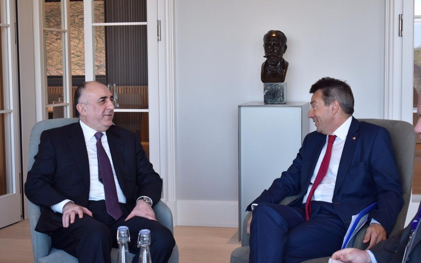 Foreign Minister reminds to ICRC president about importance of release of Shahbaz Guliyev and Dilgam Asgarov