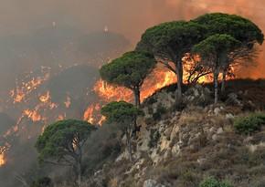 На Сицилии на фоне природных пожаров поймали поджигателей
