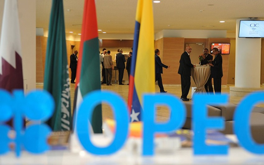Russian expert: OPEC and OPEC+ will discuss cutting output