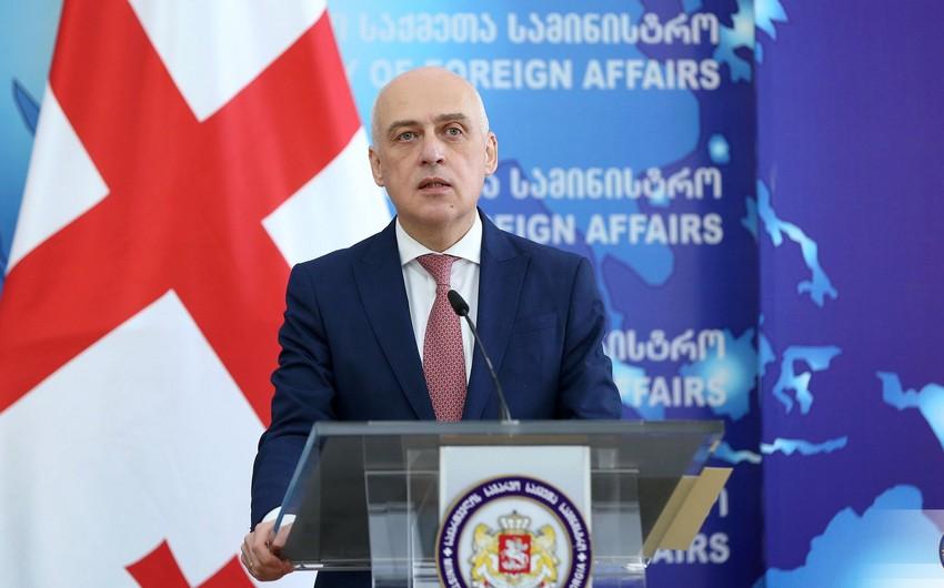 Глава МИД Грузии: Делимитация границы с Азербайджаном станет приоритетом в 2021 году