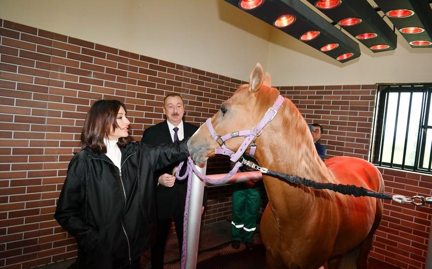 President Ilham Aliyev attends opening of Qarabag Equestrian Complex