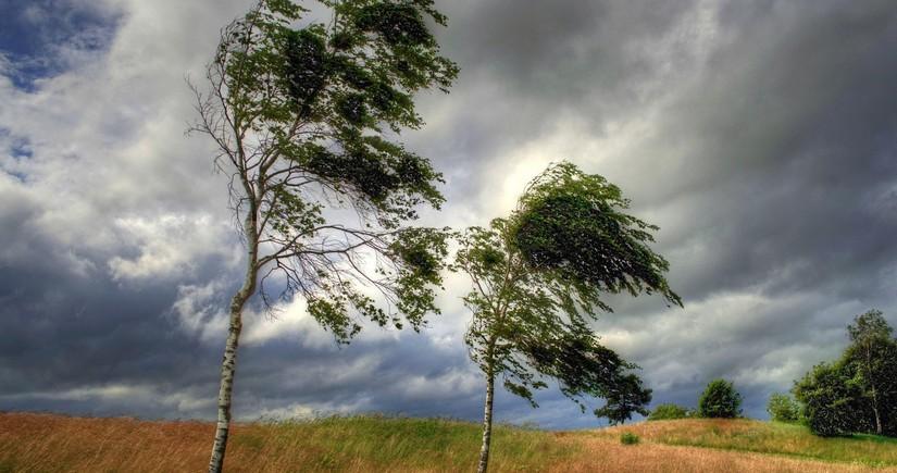 В Баку ожидаются дожди и сильный ветер