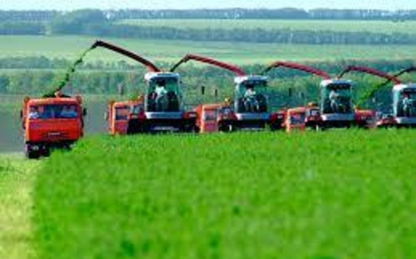 Azerbaijan posts 6.3% growth in agricultural production
