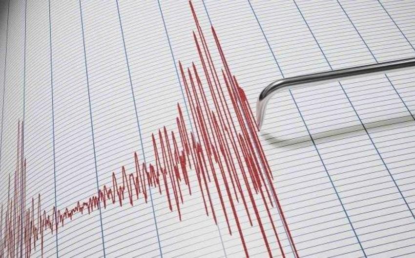 У берегов Новой Зеландии произошло землетрясение магнитудой 6,2