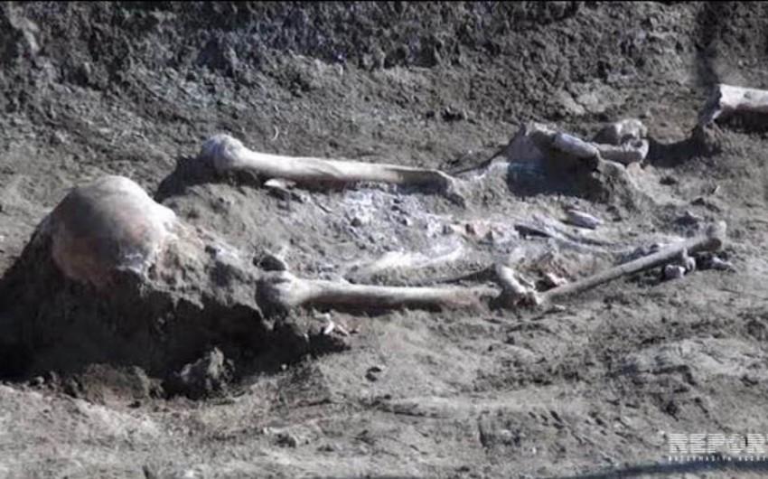 İmişlidə 2500 il yaşı olan qədim yaşayış məskəni aşkarlanıb - FOTO