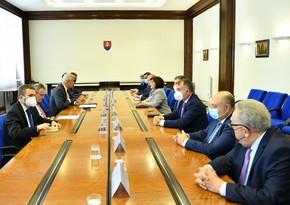 Председатель Милли Меджлиса встретилась с главой МИД Словакии