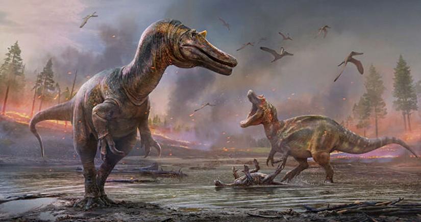 İngiltərədə iki dinozavr növü tapılıb