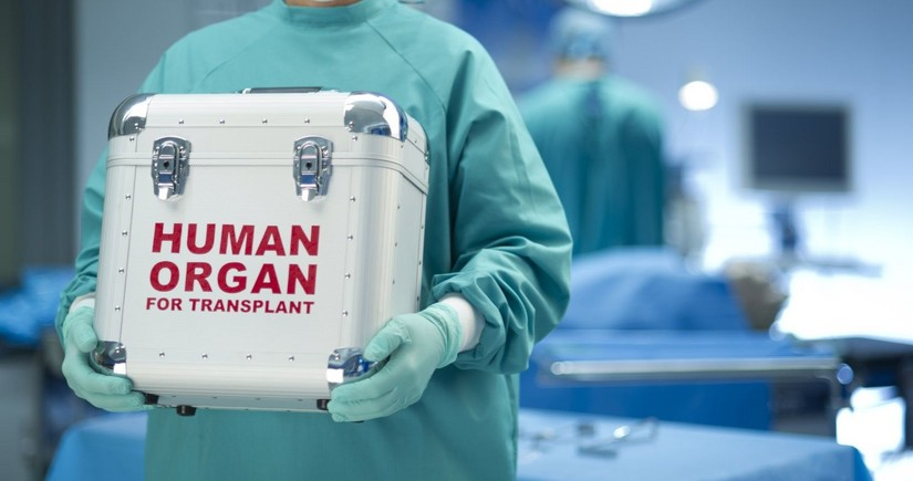 Orqan transplantasiyası ilə bağlı qanun layihəsi I oxunuşda qəbul edildi