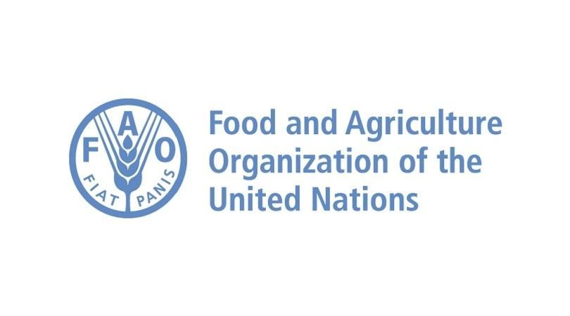 FAO Azərbaycanda fındıqçılığın inkişafına dəstək verəcək