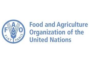 FAO прогнозирует снижение производства мяса в мире на 1,7%