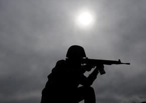 Türkiyə Ordusu şəhidlərin qisasını aldı, 33 terrorçu məhv edildi