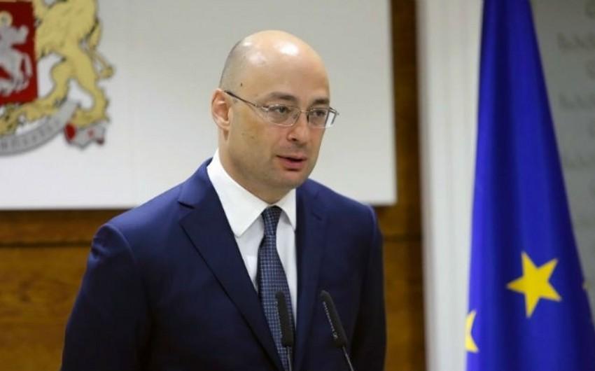 Gürcüstanın iqtisadiyyat naziri istefa verib
