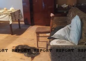 Стали известны некоторые подробности убийства женщины в Агстафе – ОБНОВЛЕНО