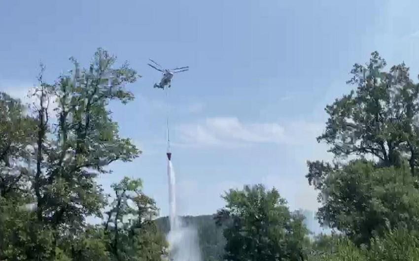 На границе с Гирканским национальным парком начался пожар