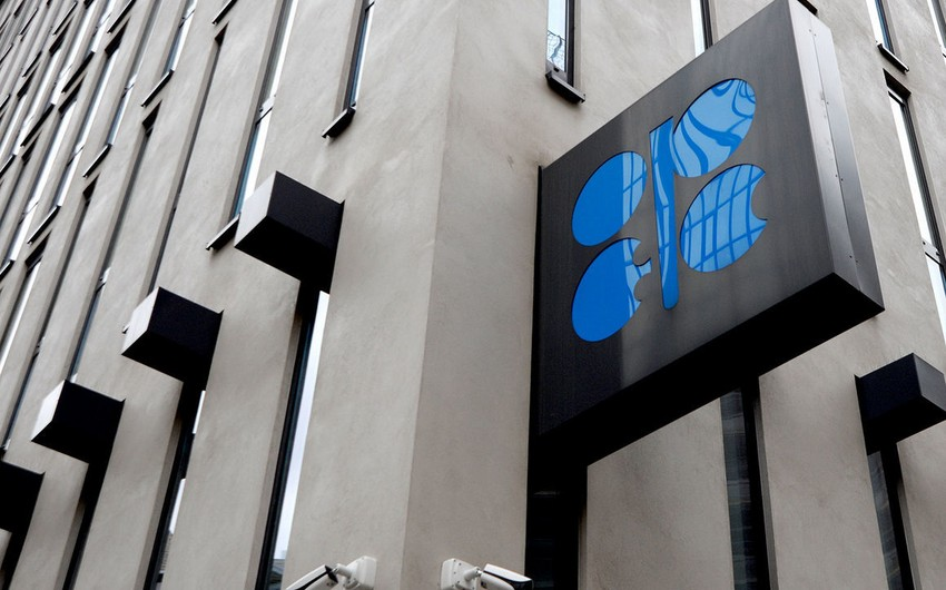 OPEC+ Monitorinq Komitəsinin növbəti iclası sentyabrda Əbu-Dabidə keçiriləcək