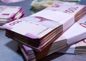 Fərdi sahibkarlara maliyyə dəstəyinin göstərilməsinə başlanılıb