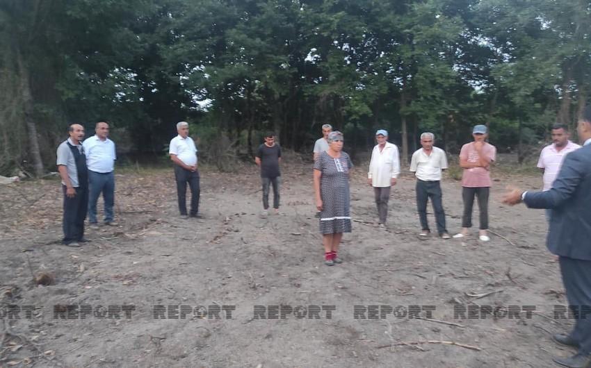Nazirlik rəsmisi Lənkəranda meşələrin qırıldığı iddia edilən ərazidə olub