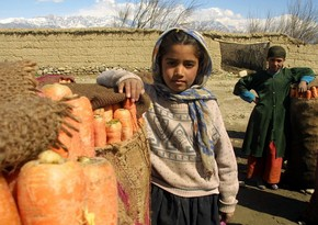 ООН получила $131 млн на помощь Афганистану