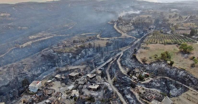 Türkiyədə 81 yanğın ocağından 70-i lokallaşdırılıb