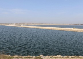 Böyük Şor gölü ilə bağlı analizlərin nəticəsi məlum olub