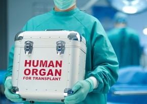 Orqan donorluğu və transplantasiyası ilə bağlı qanun təsdiqlənib
