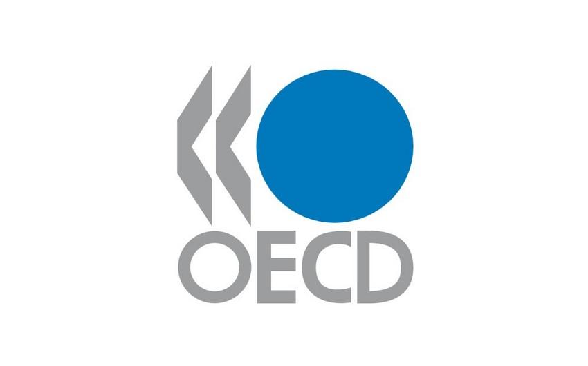 OECD qlobal ÜDM-in 5,6 % artacağını proqnozlaşdırır