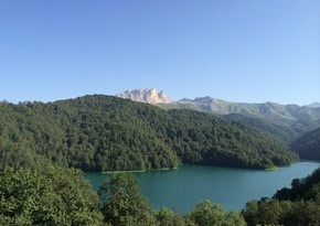 Azərbaycanın milli parklarından yaz görüntüləri
