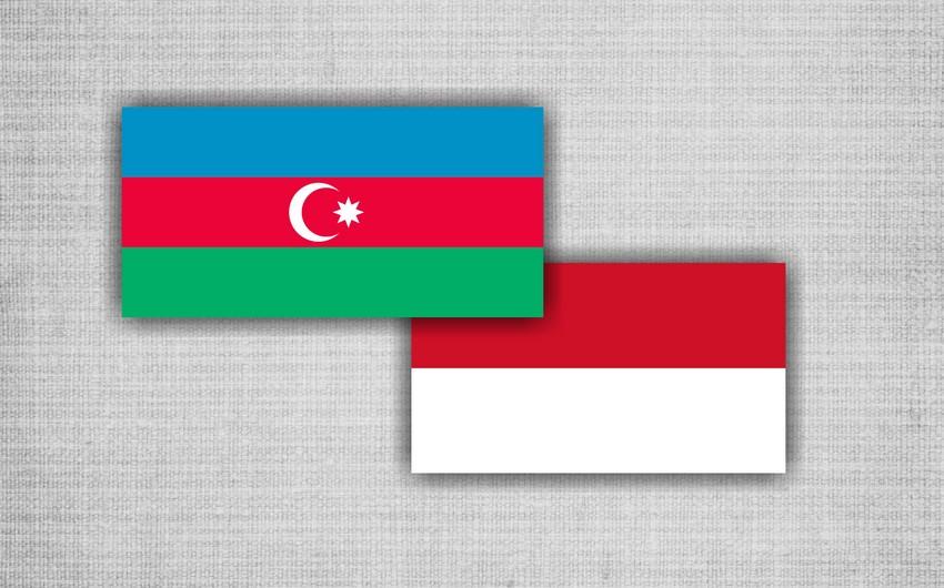 Bakıda Azərbaycan-İndoneziya enerji forumu keçiriləcək