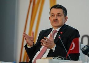 Türkiyədə 209 meşə yanğını nəzarət altına alınıb