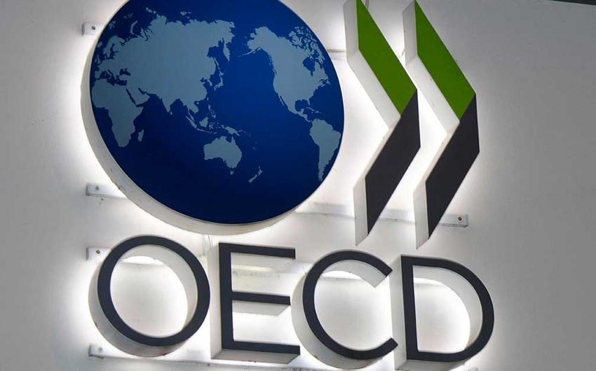 OECD qlobal iqtisadi artım proqnozunu yüksəldib