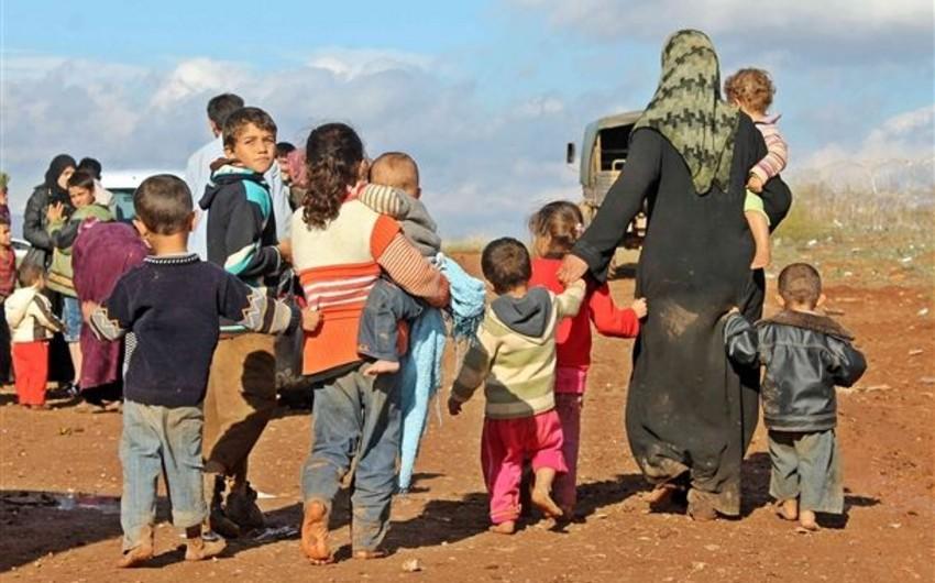 Несколько штатов США отказались принимать сирийских беженцев
