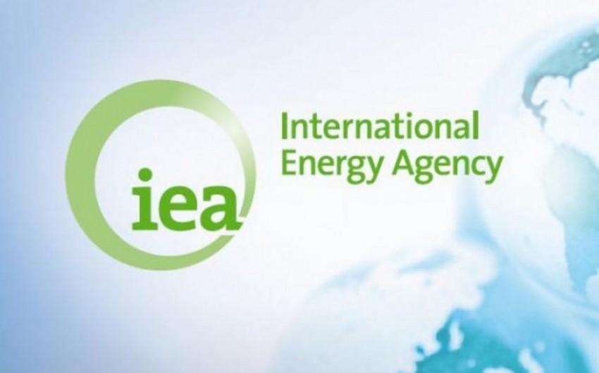 İEA: OPEC hasilatı sabit saxlasa, OECD ölkələrinin neft ehtiyatı artacaq