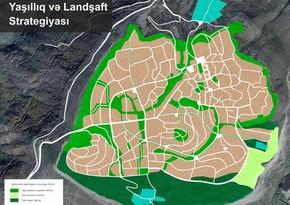 AnarQuliyev: Şuşanın təbii meşə və parkları bərpa olunacaq