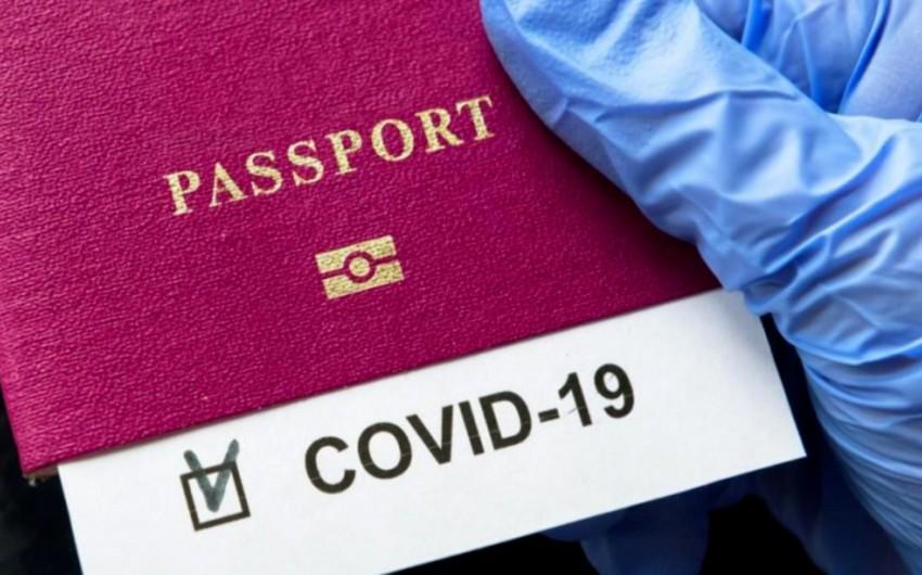 Bakıda saxta COVID-19 pasportu verən -