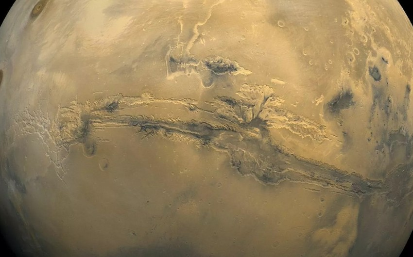 German scientists find organisms capable of living on Mars