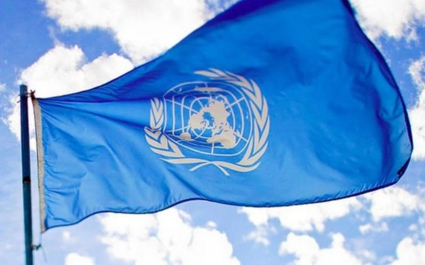 ООН: Более 900 тысяч украинцев просят статус беженца за рубежом