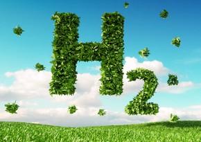 """Danimarkada """"yaşıl"""" hidrogen istehsal olunacaq"""