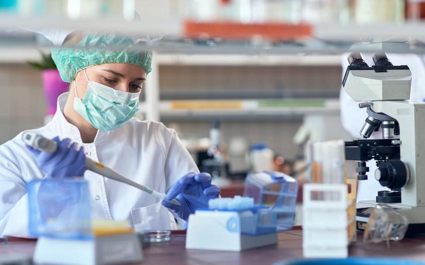 В Азербайджане 803 новых случаев заражения COVID-19